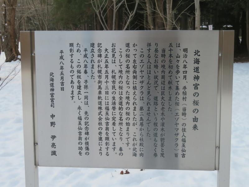 北海道神宮の風景_d0241558_16415752.jpg