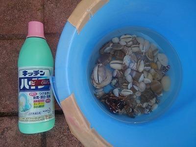 貝遊びの準備_c0180460_01132250.jpg