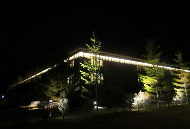 東急ハーヴェストクラブ 軽井沢&VIALA * KARUIZAWA Relax Lighting Show♪_f0236260_21582323.jpg
