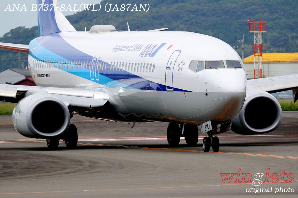 '19年 高知空港レポート ・・・ ANA/JA87AN_f0352866_21553096.jpg