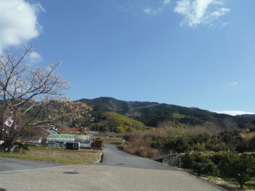山の辺の道のんびりポタリング_b0332867_21200214.jpg