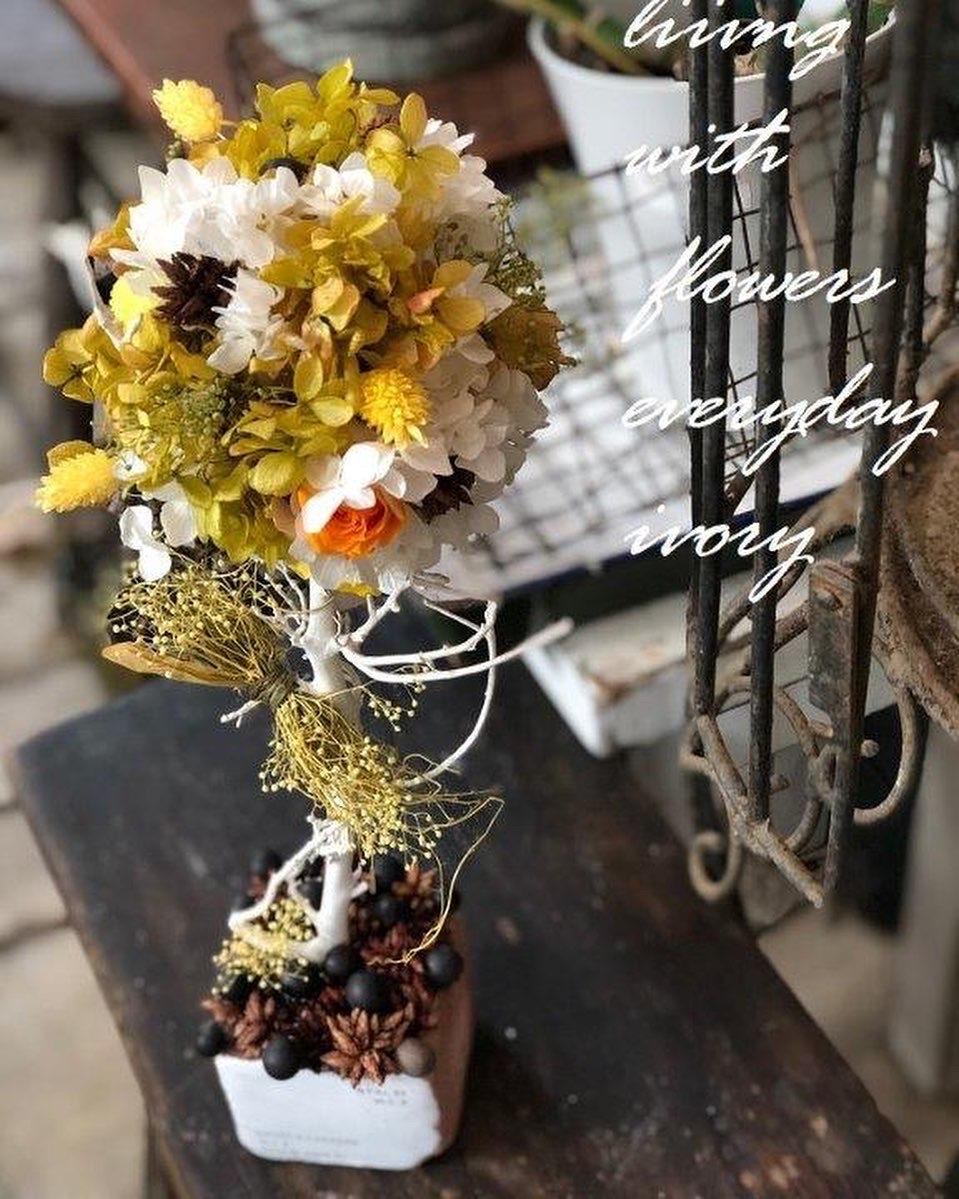 『〜IVORY 花教室 1 January 開催です~♬』_b0094378_19111505.jpeg