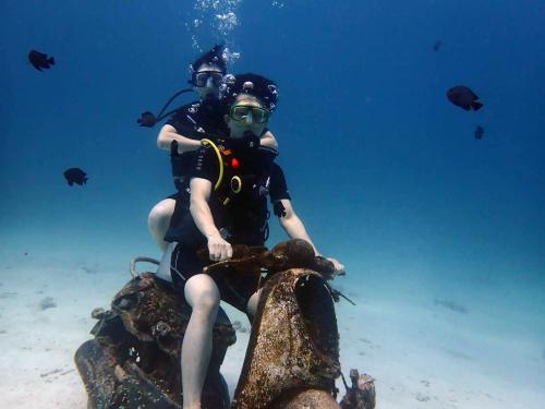 ラチャヤイ島 ナイス体験ダイビング(*^_^*)_f0144385_22472531.jpg