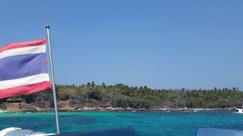 ラチャヤイ島 ナイス体験ダイビング(*^_^*)_f0144385_22535942.jpg