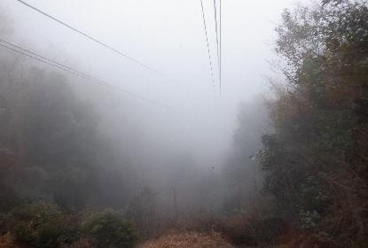 寒霞渓のロープウエイは下れ!_e0077899_1073134.jpg