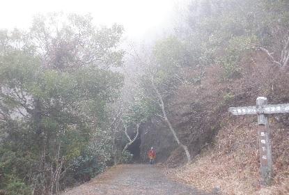 寒霞渓のロープウエイは下れ!_e0077899_1074526.jpg
