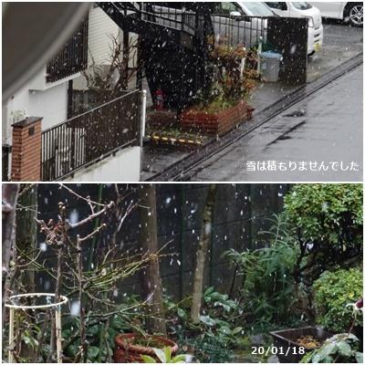 新宿箱根山へ_c0051105_17082803.jpg
