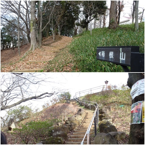 新宿箱根山へ_c0051105_22254165.jpg