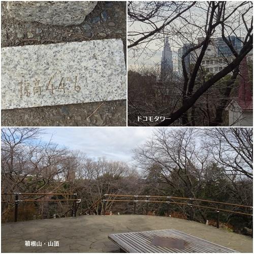新宿箱根山へ_c0051105_22262139.jpg