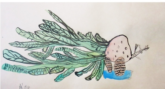 よくみて描く・冬野菜 2020 1月_f0211514_18101466.jpg