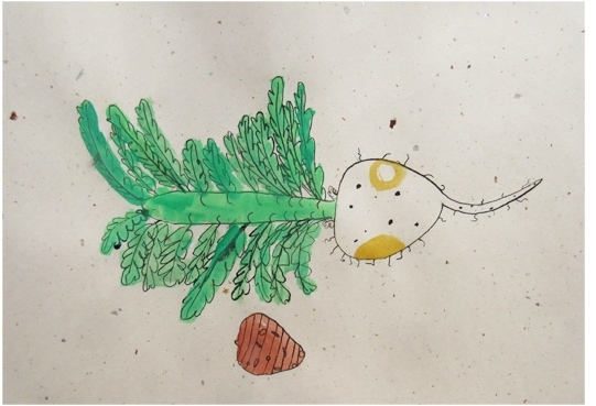 よくみて描く・冬野菜 2020 1月_f0211514_18111751.jpg