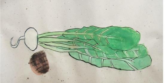 よくみて描く・冬野菜 2020 1月_f0211514_18141682.jpg