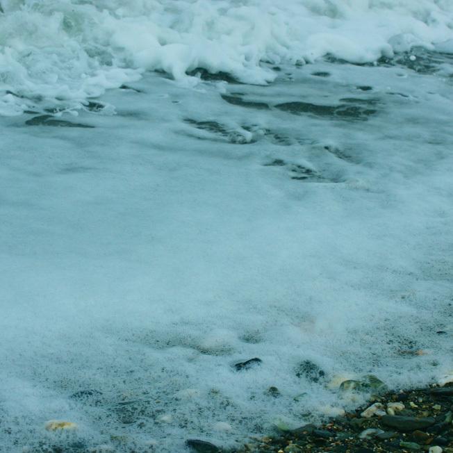 寒気持ちいい冬の海で見つけたちいさな春_a0329820_18230347.jpg