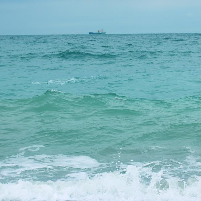 寒気持ちいい冬の海で見つけたちいさな春_a0329820_18231704.jpg