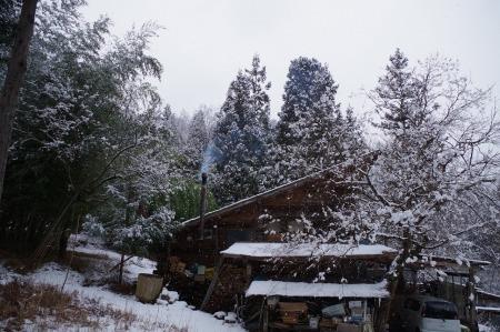 雪降りですが・・・。_f0114346_11501307.jpg
