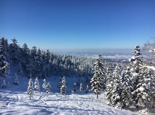 三段山でスノーシュー_e0326953_17071076.jpg