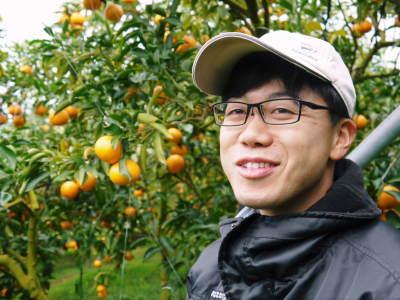 究極の柑橘「せとか」 令和2年も出荷は2月中旬より!収穫まで1ヶ月前の様子を現地取材(前編)_a0254656_18050698.jpg