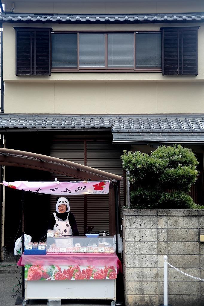 嵐山.嵯峨野5_a0170082_18345941.jpg