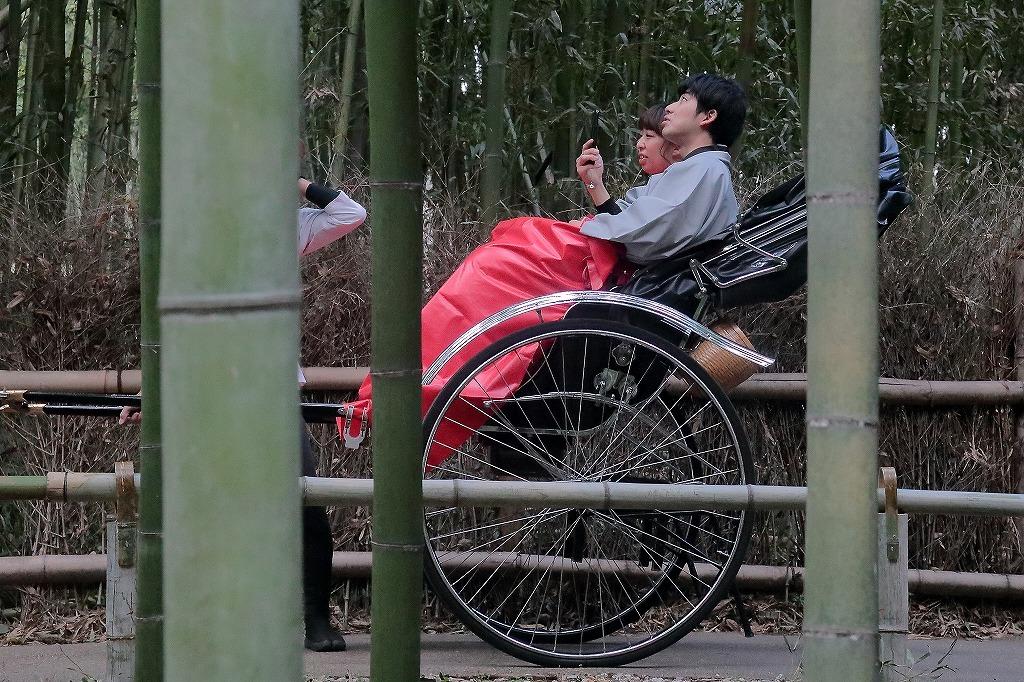 嵐山.嵯峨野5_a0170082_18350647.jpg