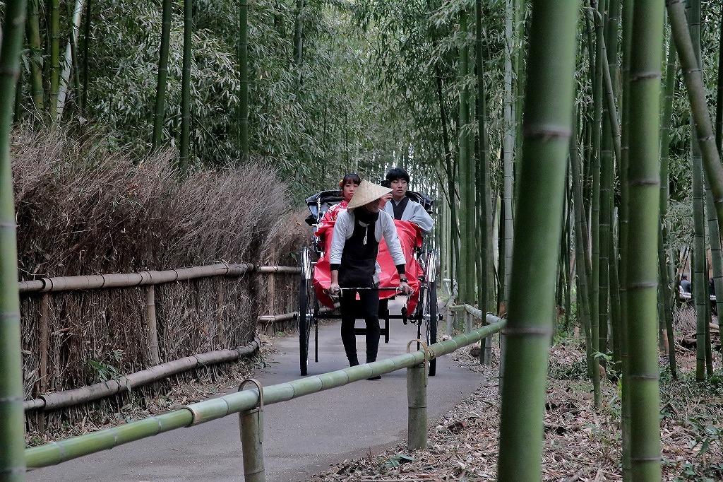 嵐山.嵯峨野5_a0170082_18350876.jpg