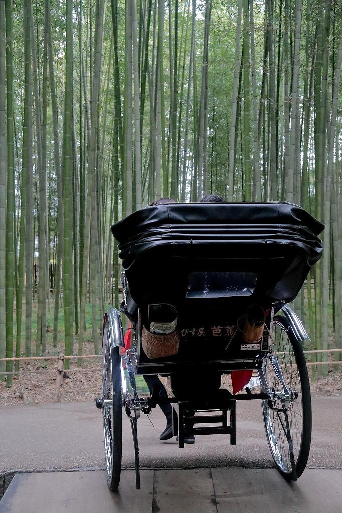 嵐山.嵯峨野5_a0170082_18351149.jpg
