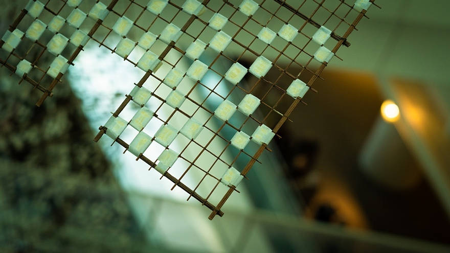 冬の美術館に潜む光蜥蜴_d0353489_08451739.jpg