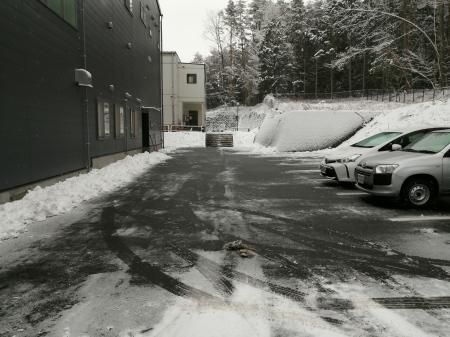 今年2回目の雪_c0193896_10002492.jpg