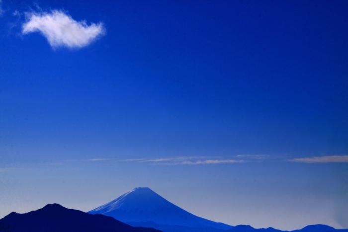 令和2年1月の富士 (12) 美し森からの富士_e0344396_11054658.jpg