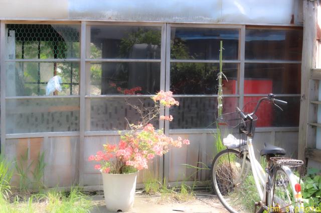 自転車のある風景_a0158797_23073302.jpg