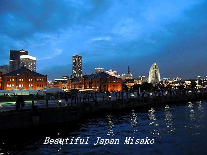 工場夜景ジャングルクルーズ・゚☆、・:`☆・・゚・゚☆。横浜_c0067206_12322919.jpg