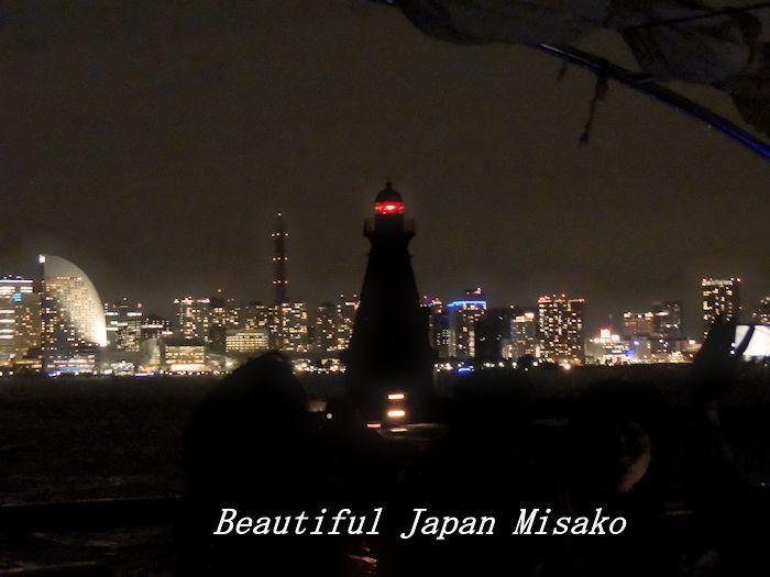 工場夜景ジャングルクルーズ・゚☆、・:`☆・・゚・゚☆。横浜_c0067206_12323068.jpg
