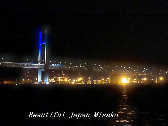 工場夜景ジャングルクルーズ・゚☆、・:`☆・・゚・゚☆。横浜_c0067206_13563212.jpg