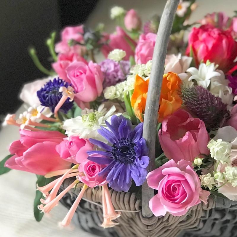 春爛漫を愉しむ…_a0157813_18004208.jpg