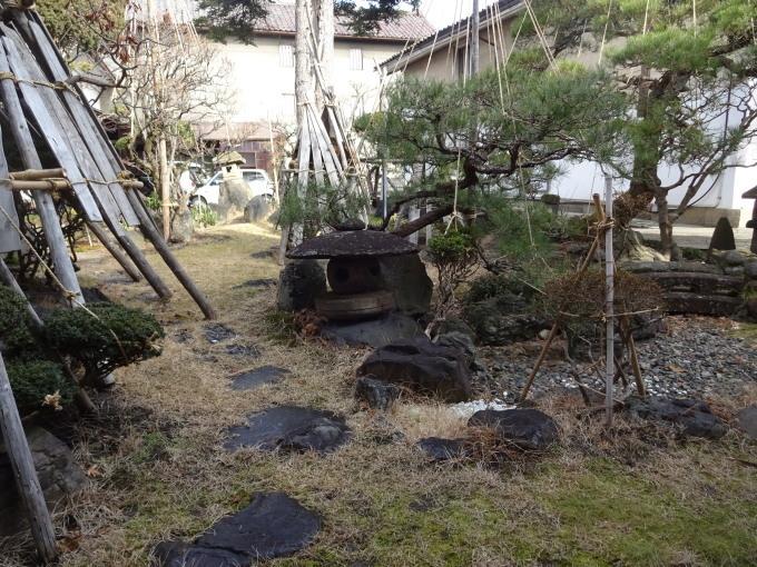雪のない新春のお庭_c0141223_18505347.jpg
