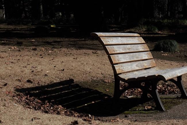 冬の公園_d0264733_10290142.jpg
