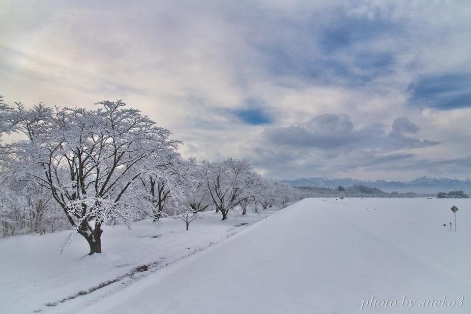 みちのく雫石川園地(冬景色)_d0067934_11050029.jpg