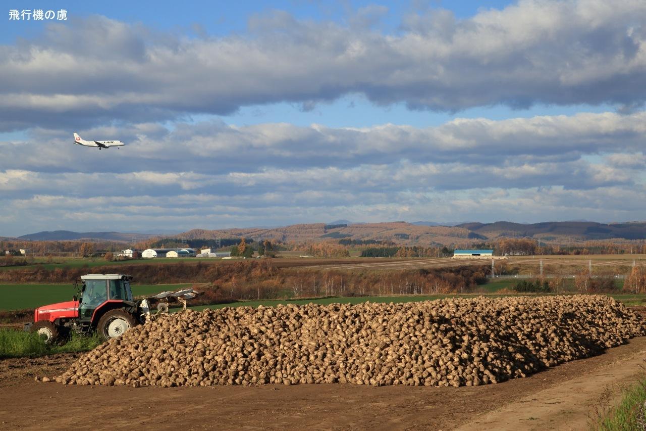 収穫  ERJ-170  ジェイ・エア(JLJ)_b0313338_00525363.jpg