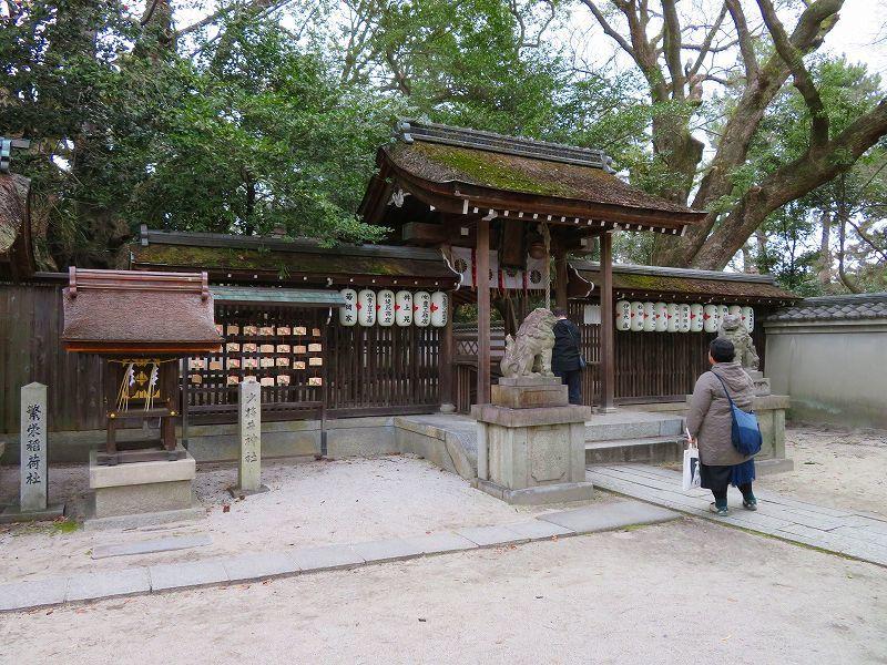 京都御苑「宗像神社と水仙」20200118_e0237645_16210905.jpg