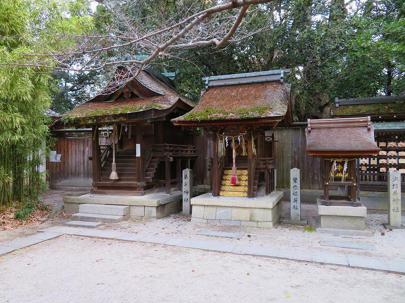 京都御苑「宗像神社と水仙」20200118_e0237645_16210924.jpg