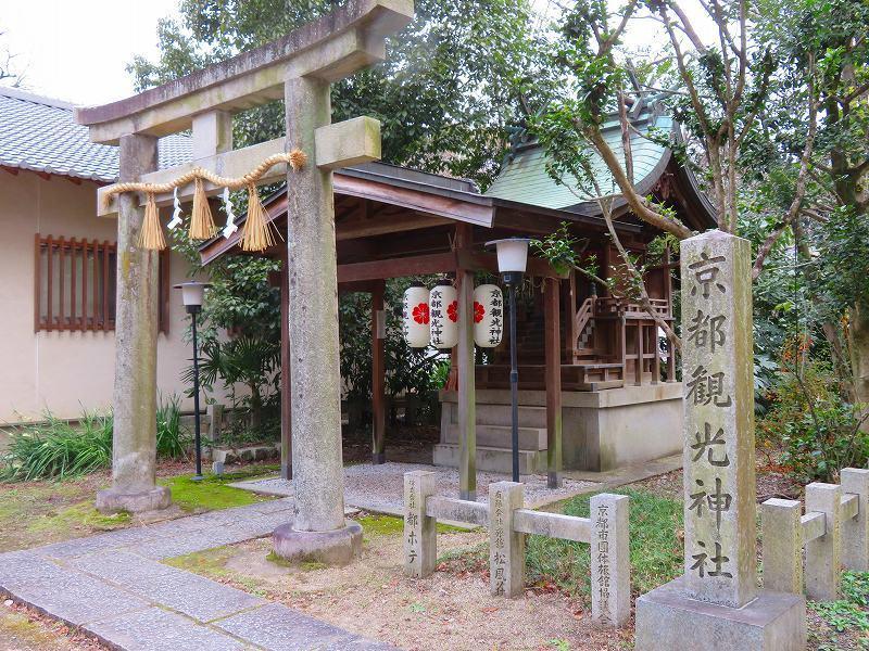 京都御苑「宗像神社と水仙」20200118_e0237645_16231232.jpg