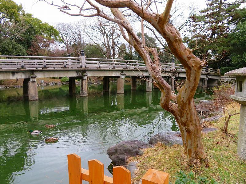 京都御苑「九条邸跡と厳島神社」20200118_e0237645_16340251.jpg