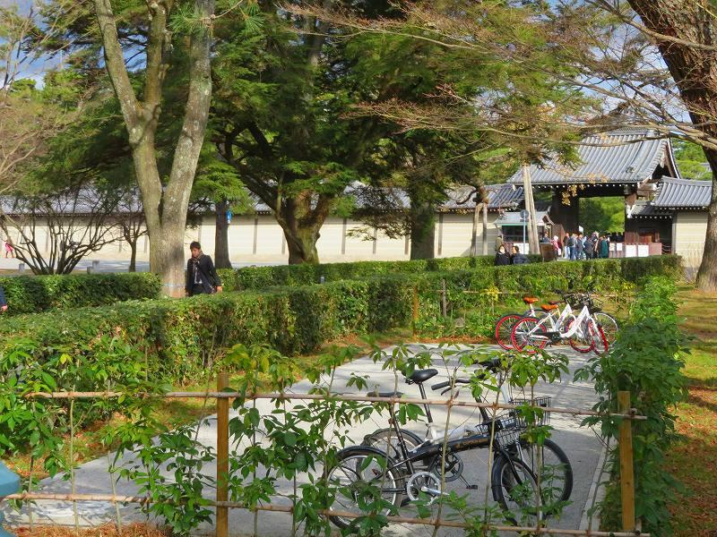 京都御苑「京都御所に沢山の訪問者」20200118_e0237645_16570892.jpg