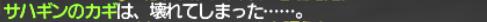 初心者・復帰者応援シリーズ ~乙女のヴィルレー~_e0401547_15455013.png