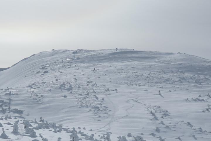 2020年1月19日 大崩山・猫岳(岐阜県高山市)_c0116856_16384954.jpg