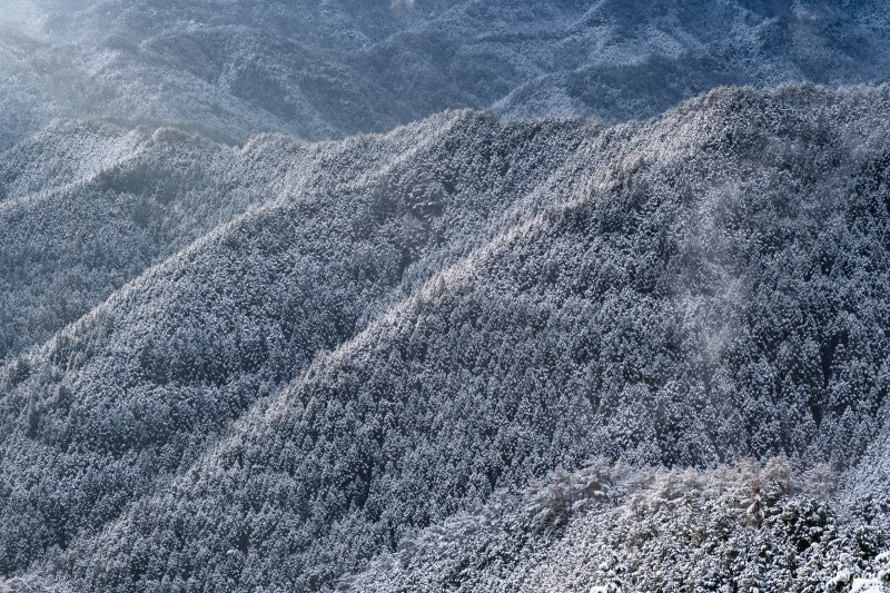 待望の雪 野迫川_c0350572_11540806.jpg