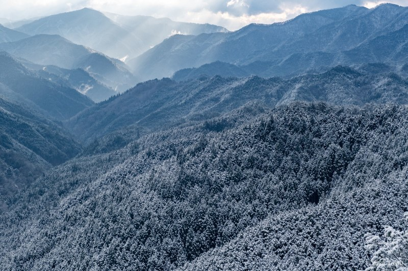 待望の雪 野迫川_c0350572_11551606.jpg