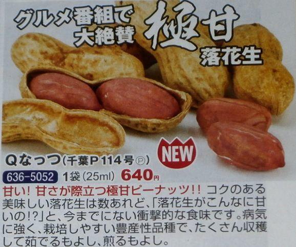落花生の甘い新品種「Qなっつ」_f0018078_17251680.jpg