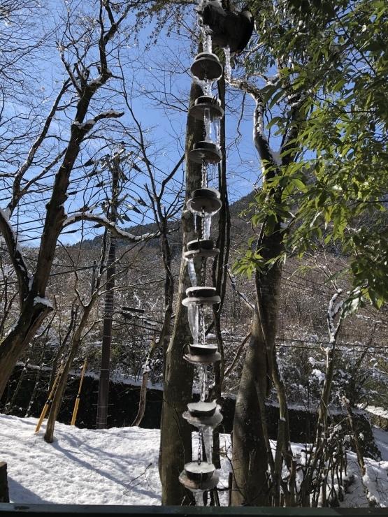 2020年1月19日 雪楽しめる_b0098584_15282472.jpeg