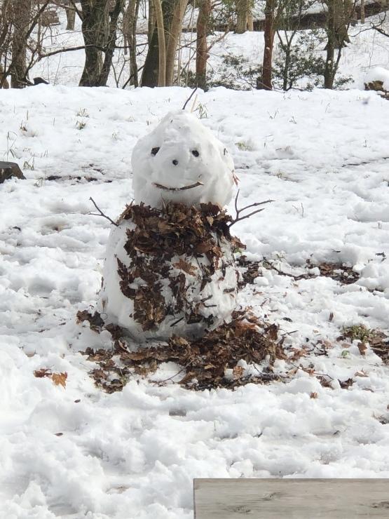 2020年1月19日 雪楽しめる_b0098584_15291854.jpeg