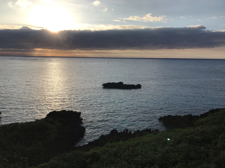 南の島へ_f0378589_07232598.jpg